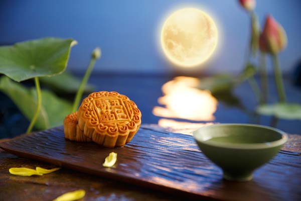 Mid autumn moon cake