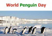 World Penguin Day 2020